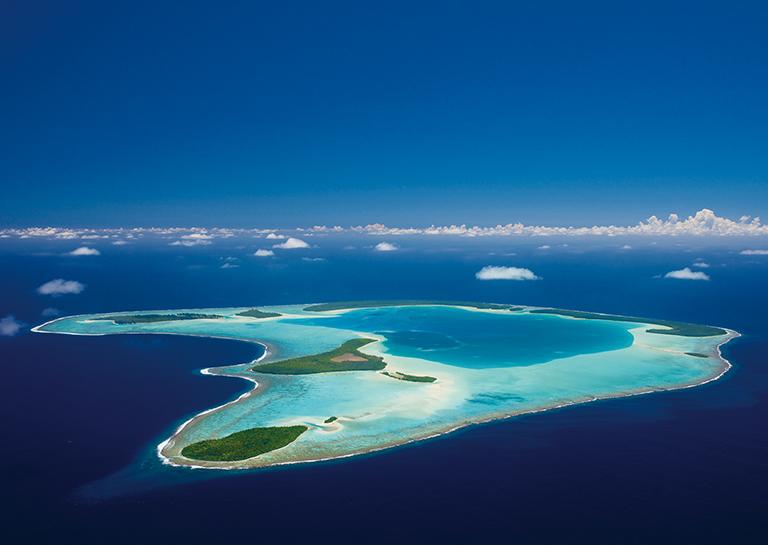 【水とともに】ダイビング業界や高級リゾートも海の環境保護に取り組んでいる
