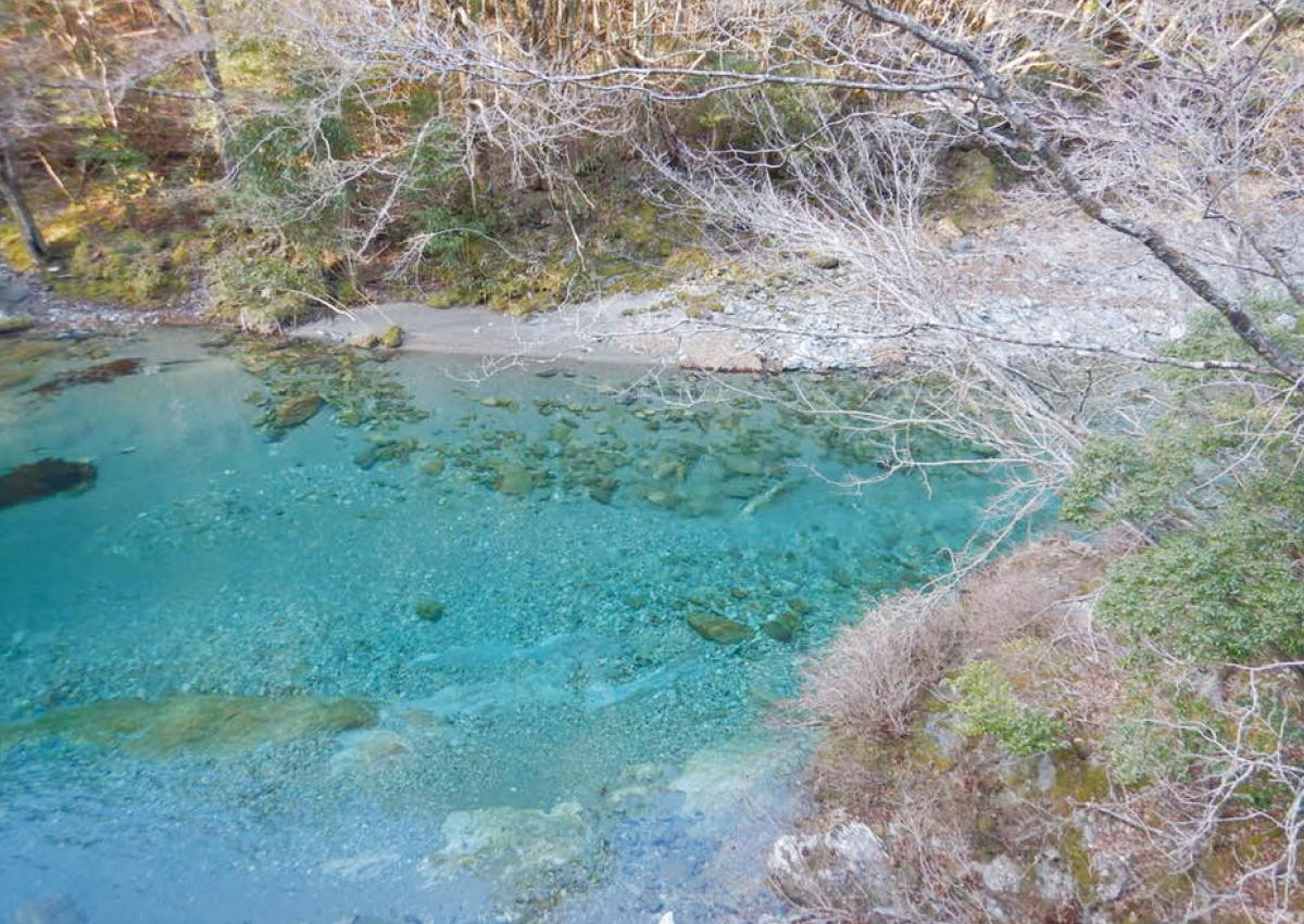 【水とともに】川の師との出会いから水を育む森の仕事へ